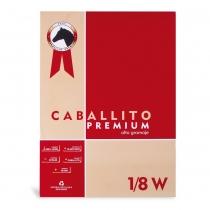 Block Tabaré 1/8W Caballito Premium 25x35cm 20 Hojas