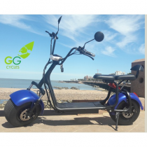 Scooter Eléctrica Go-Green Naked PRO