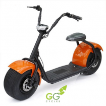 Scooter Eléctrica Go-Green Naked